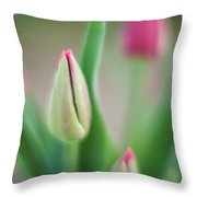 Tulip Curves And Blooms Throw Pillow