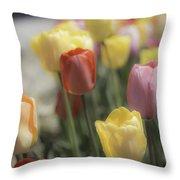 Tulip Display Throw Pillow