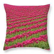 Tulip Festival In Mount Vernon Throw Pillow
