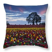 Tulip Field's Last Colors Throw Pillow