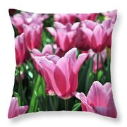 Tulip Heaven Throw Pillow