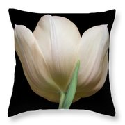 Tulip #2 Throw Pillow