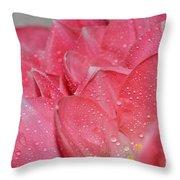 Tulip Lacery Throw Pillow