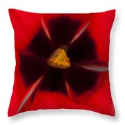 Tulip Macro 1 Throw Pillow