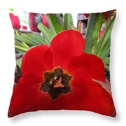 Tulip Mania 19 Throw Pillow