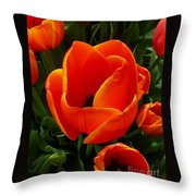 Tulip Orange Flower Throw Pillow
