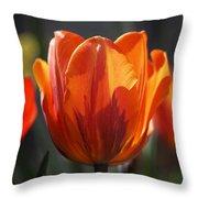 Tulip Prinses Irene Throw Pillow