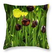 Tulip Race Time Throw Pillow