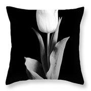Tulip Throw Pillow
