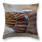 Tulip Shell - By Sabine Edrissi Throw Pillow
