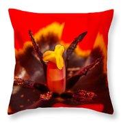 Tulip Stamp Throw Pillow
