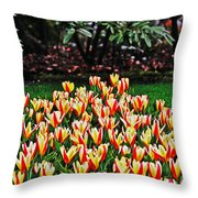 Tulip Stripe Garden Throw Pillow