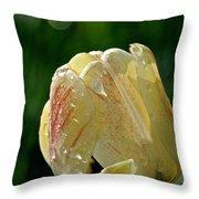 Tulip Teardrops  Throw Pillow