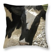 Tulip The Cow Throw Pillow
