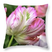 Tulip Time Pink And White Throw Pillow