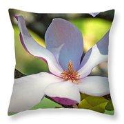 Tulip Tree Bloom Throw Pillow