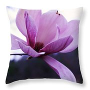 Tulip Tree Blooming Throw Pillow
