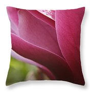 Tulip Tree Flower With Raindrops Throw Pillow