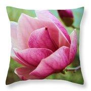 Tulip Tree In Bloom Throw Pillow