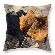 Tulip Tree Leaf - Frozen Raindrops In The Sunshine Throw Pillow