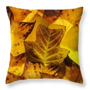 Tulip Tree Leaves In Autumn Throw Pillow