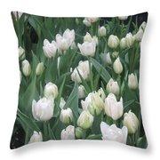Tulip White Show Flower Butterfly Garden Throw Pillow