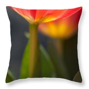 Tulip#5 Throw Pillow