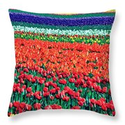 Tulipomania Throw Pillow by Benjamin Yeager
