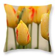 Tulips 6 Throw Pillow