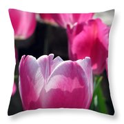 Tulips - Affectionately Yours 02 Throw Pillow