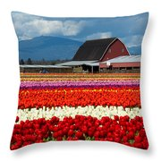 Tulips And Barn Throw Pillow
