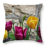 Tulips And Stone Throw Pillow