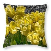 Tulips At Dallas Arboretum V23 Throw Pillow
