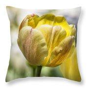 Tulips At Dallas Arboretum V27 Throw Pillow