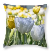 Tulips At Dallas Arboretum V28 Throw Pillow