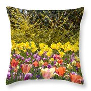 Tulips At Dallas Arboretum V32 Throw Pillow