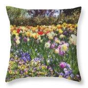 Tulips At Dallas Arboretum V33 Throw Pillow