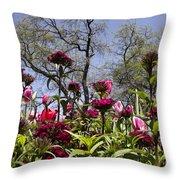 Tulips At Dallas Arboretum V35 Throw Pillow