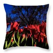 Tulips At Dallas Arboretum V63 Throw Pillow
