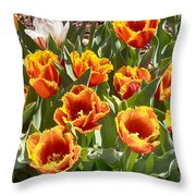 Tulips At Dallas Arboretum V71 Throw Pillow