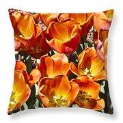 Tulips At Dallas Arboretum V80 Throw Pillow