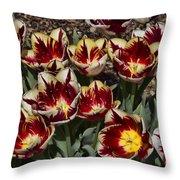 Tulips At Dallas Arboretum V93 Throw Pillow