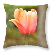 Tulips At Thanksgiving Point - 18 Throw Pillow