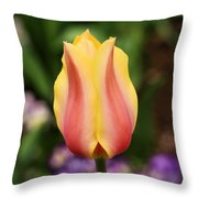 Tulips At Thanksgiving Point - 23 Throw Pillow