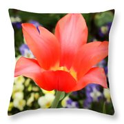 Tulips At Thanksgiving Point - 27 Throw Pillow