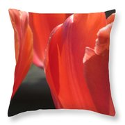Tulips Backlit 5 Throw Pillow