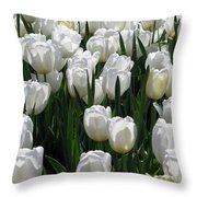 Tulips - Field With Love 19 Throw Pillow