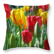 Tulips - Field With Love 22 Throw Pillow