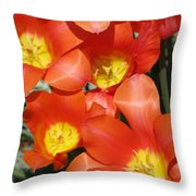 Tulips - Field With Love 25 Throw Pillow