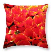 Tulips - Field With Love 28 Throw Pillow